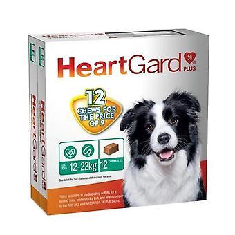 Heartgard Plus Chew Green 12 PACK