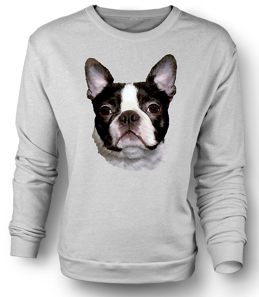 Mens Sweatshirt Boston Terrier Pet - Dog