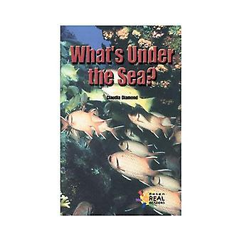 What's Under the Sea? (Reading Room Collection: Set 6 Science & Math in Our World)