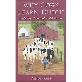 Why Cows Learn Dutch: And Other Secrets of the Amish Farm