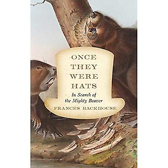 Once They Were Hats : In Search of the Mighty Beaver