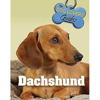 Dackel (Hund Geliebte Führer)
