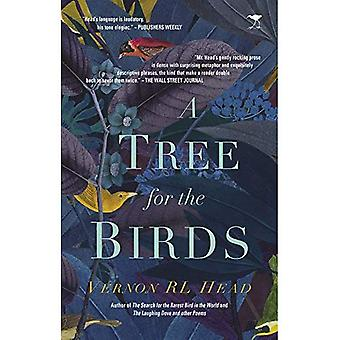 A tree for the birds