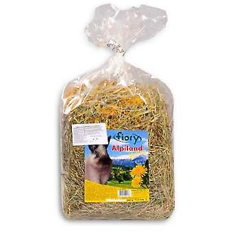 Fiory Hay Alpiland With Dandelion 500GR. (Small pets , Hay)
