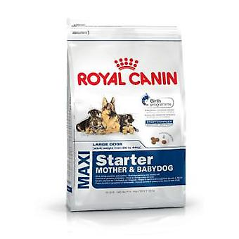 Royal Canin Maxi Starter (Dogs , Dog Food , Dry Food)