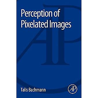 Percepción de imágenes pixeladas