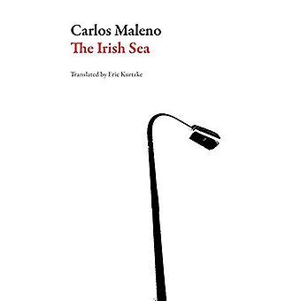The Irish Sea (Spanish Literature Series)