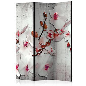 Skærmvæg - Concrete Orchid [Room Dividers]