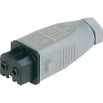 Mains connector STAK Series (mains connectors) STAK Socket, straight Total number of pins: 2 + PE 16 A Grey Hirschmann STAK 2 1 pc(s)