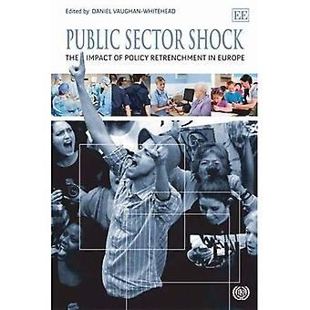 Public Sector Shock