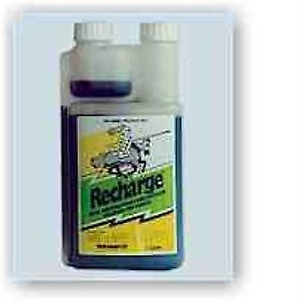 Recharge Equine 5L