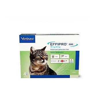 Virbac Effipro Duo Spot på Gatos 4 Pipetas
