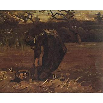 Peasant Woman Digging Up Potatoes, Vincent Van Gogh, 31.5 x38cm