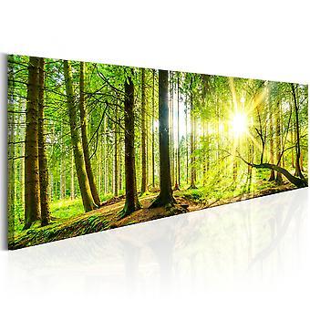 Canvas Print - Majestic Trees