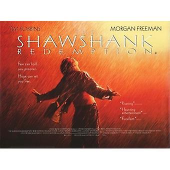 L'affiche du film The Shawshank Redemption (17 x 11)