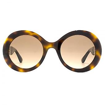 Jimmy Choo Wendy Sunglasses In Havana Glitter