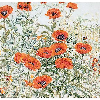Orange Poppies On Aida Counted Cross Stitch Kit-17.75