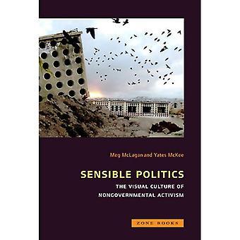 Förnuftig politik: Den visuella kulturen av icke-statliga aktivism