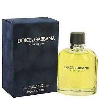 Dolce & Gabbana By Dolce & Gabbana Eau De Toilette Spray 6.7 Oz (men) V728-518299