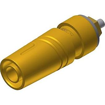 Safety jack socket Socket, vertical vertical Pin diameter: 4 mm Yellow SKS Hirschmann SAB 2640 LK Au 1 pc(s)