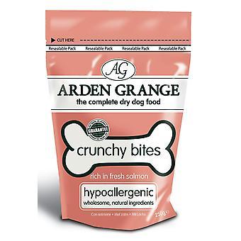 Arden Grange sprødt bid rige i fersk laks 250g (pakke med 10)