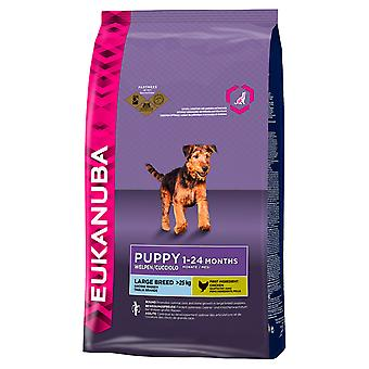 Eukanuba Dog Puppy & Junior Large Breed 3kg