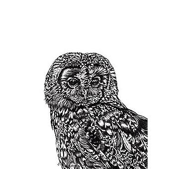 Tawny owl art print OWL Lucy Francis small format