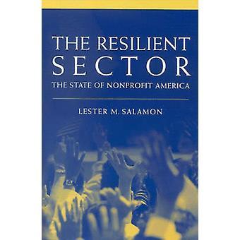 Elastischen Bereich - den Zustand der gemeinnützigen Amerika durch Lester M. Sal