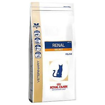 Royal Canin Renal Select (Cats , Cat Food , Dry Food)