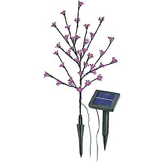 Solar decorative light Flowering shrub LED 0.6 W Pink Esotec Blütenstrauch 102104 Anthracite