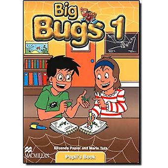 Große Fehler 1: Aufgabenbuch (Bugs International)