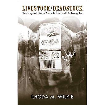 Karjan/puuvillaisesta: Elintarvikkeiden eläinten, epäselviä suhteita ja tuottava yhteyksissä