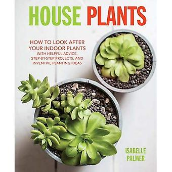 House Plants: How to look after your indoor plants: with helpful advice, step-by-step projects, and inventive...